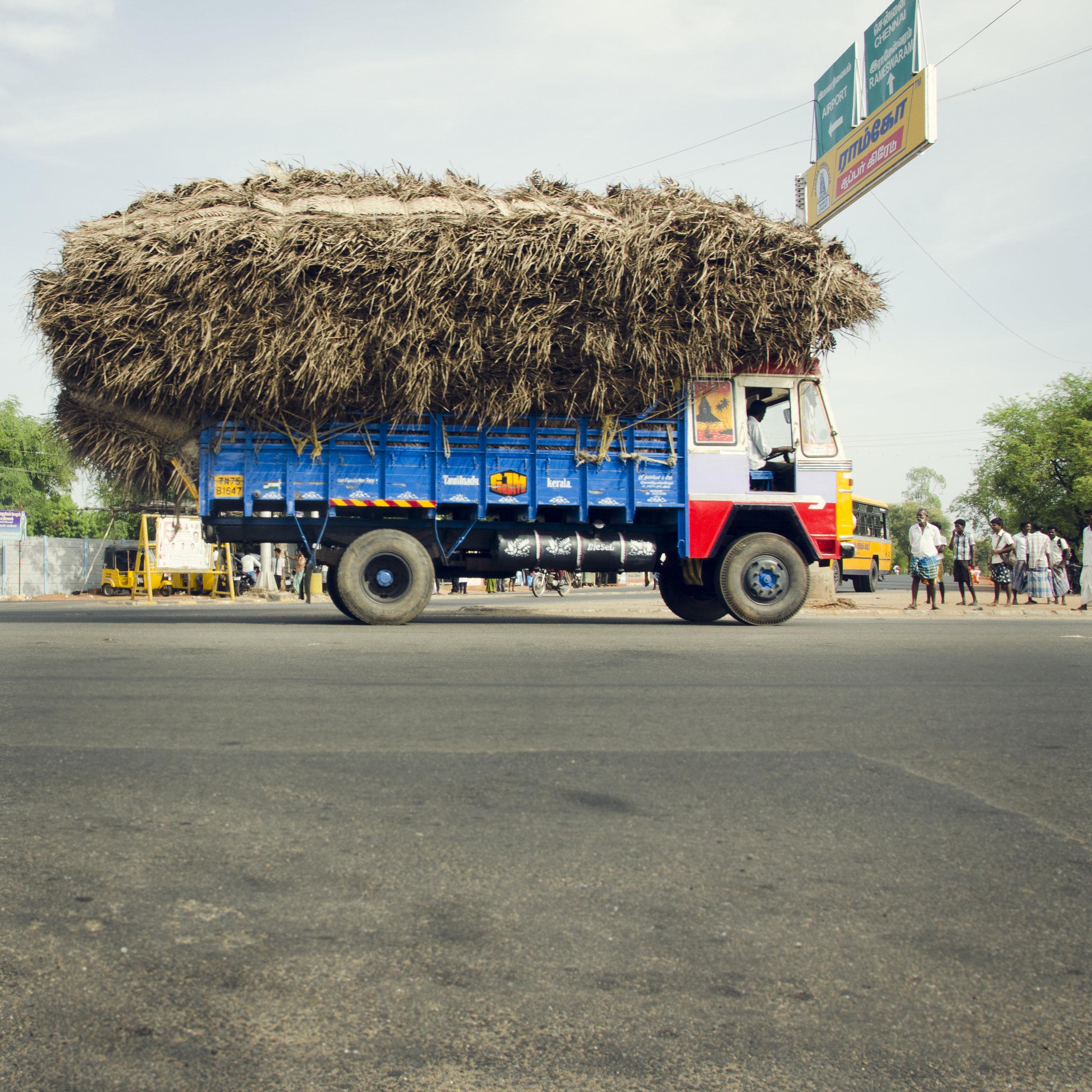 India-68.jpg