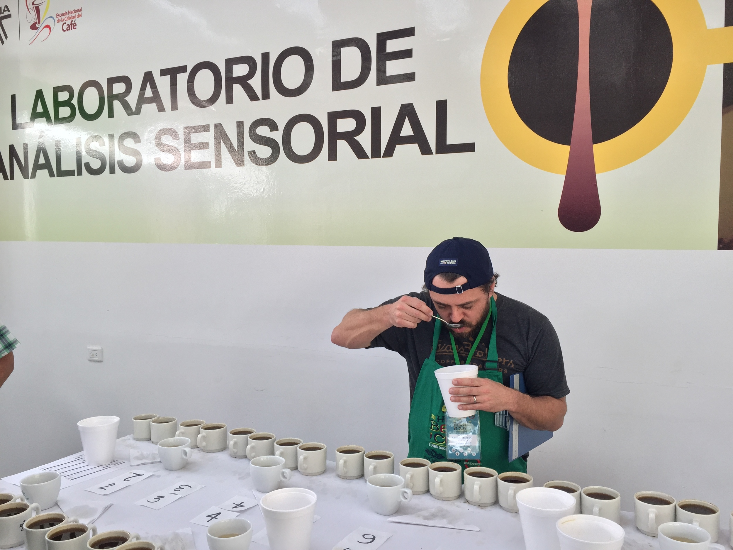 Cupping many beautiful Huila coffees.