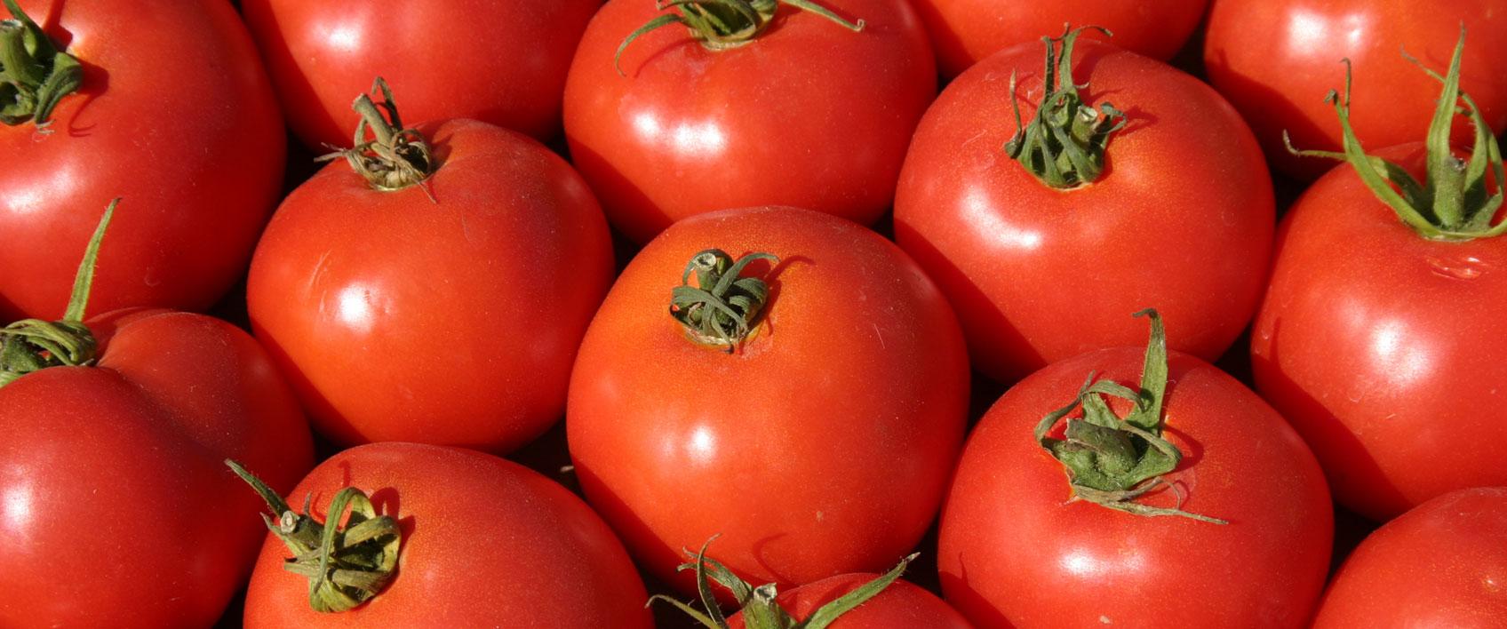 Watermelons, Grapes, & Vegetables (Mexico) — Giumarra Companies
