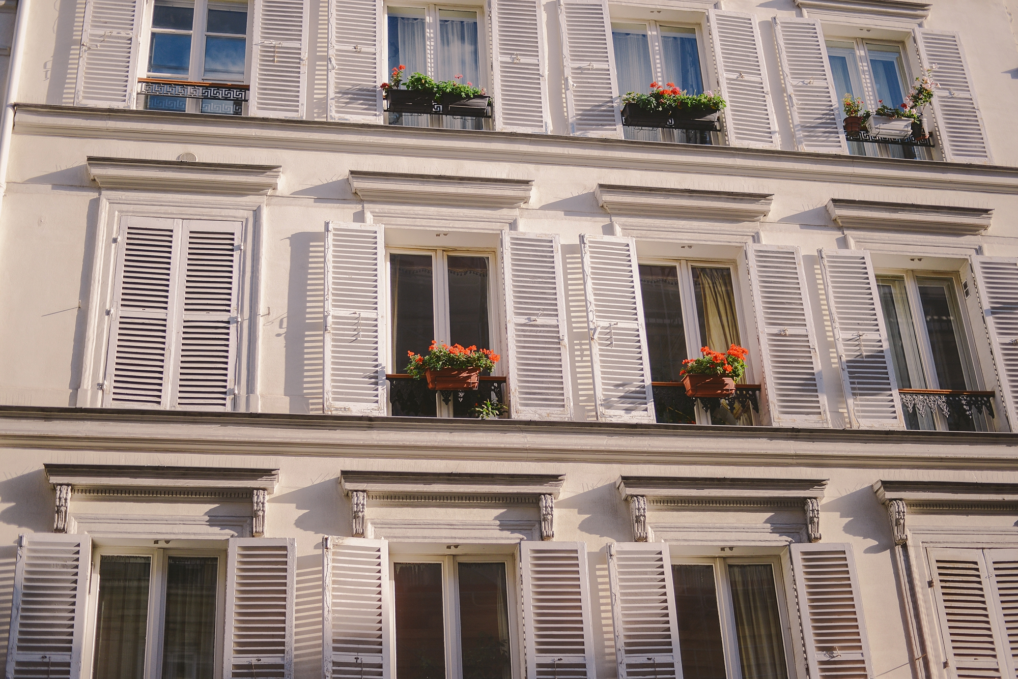 typical parisian windows with flower pots_0002.jpg