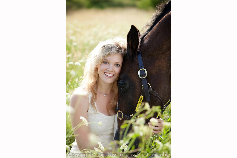 Horse Portrait - North Shore - Auckland