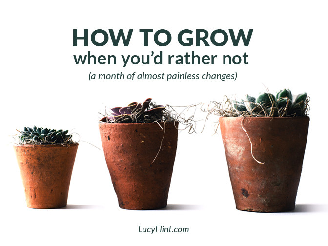 Tired of trying to make changes and improvements? Me too. Convinced you still need to? Yeah... me too. Let's figure this out at lucyflint.com