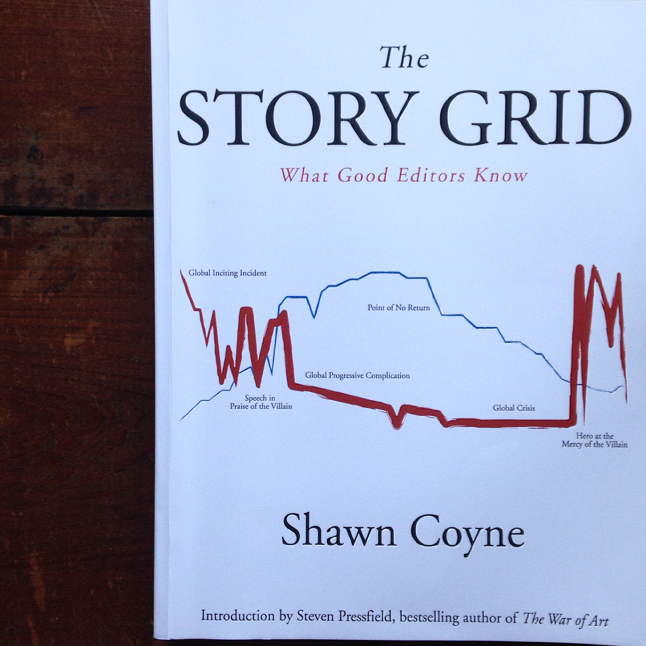 The one-stop shop for all your editing needs!! Use this book to diagnose allllll your story problems. (And then fix 'em!)   lucyflint.com