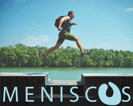 meniscus-01.png