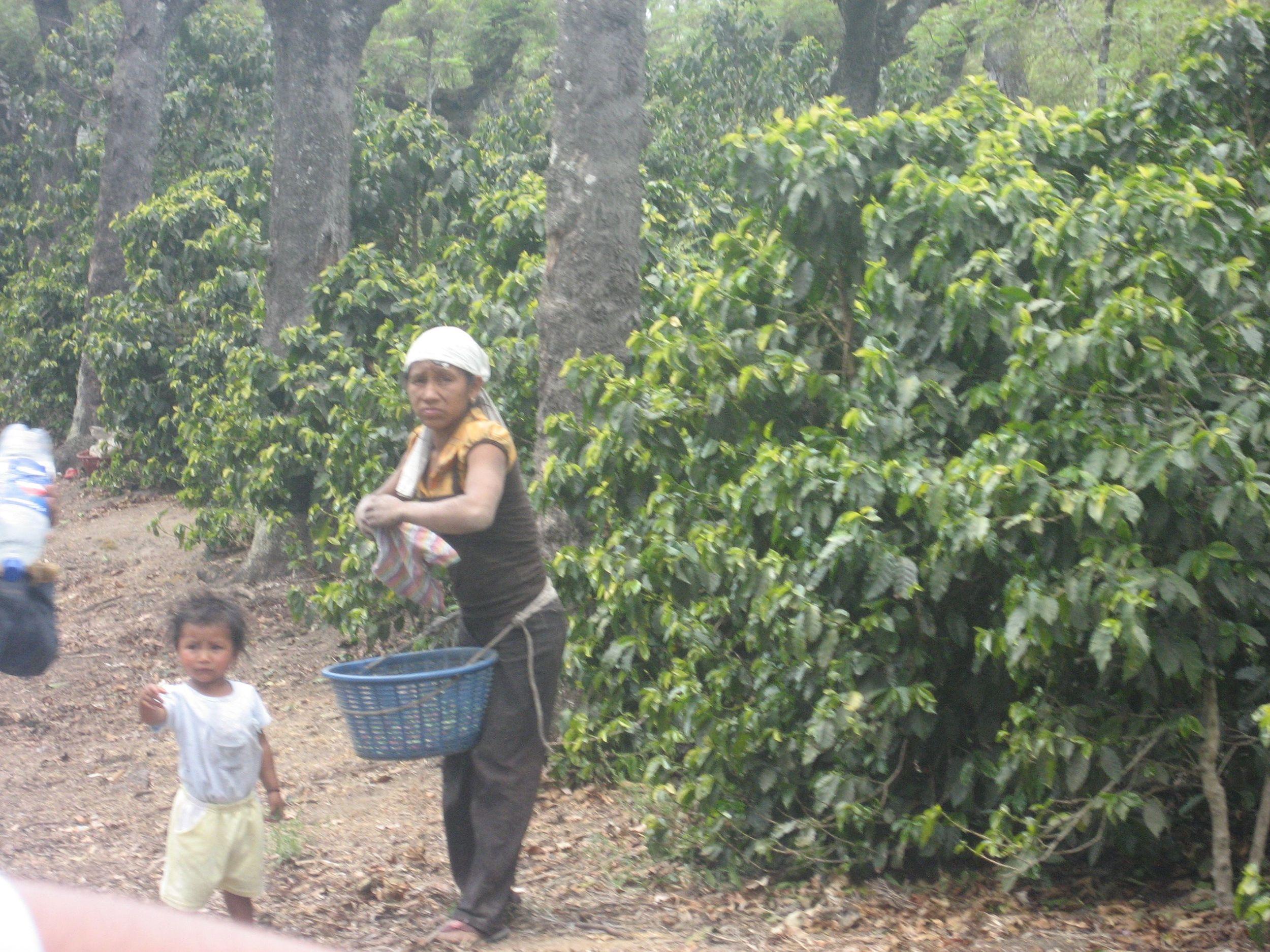 Guatemala 2009 188.jpg