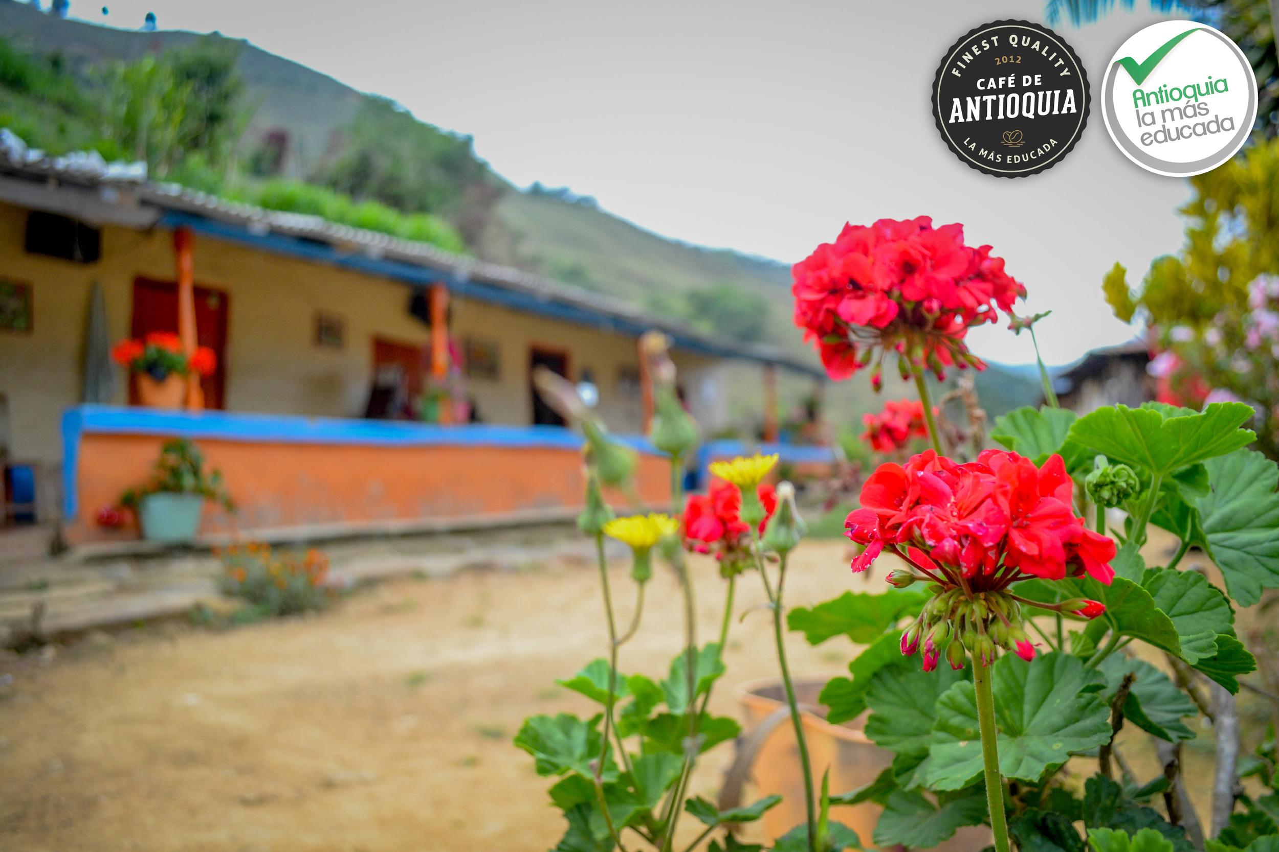 Antioquia Microlo Final El Rodeo 4.jpg