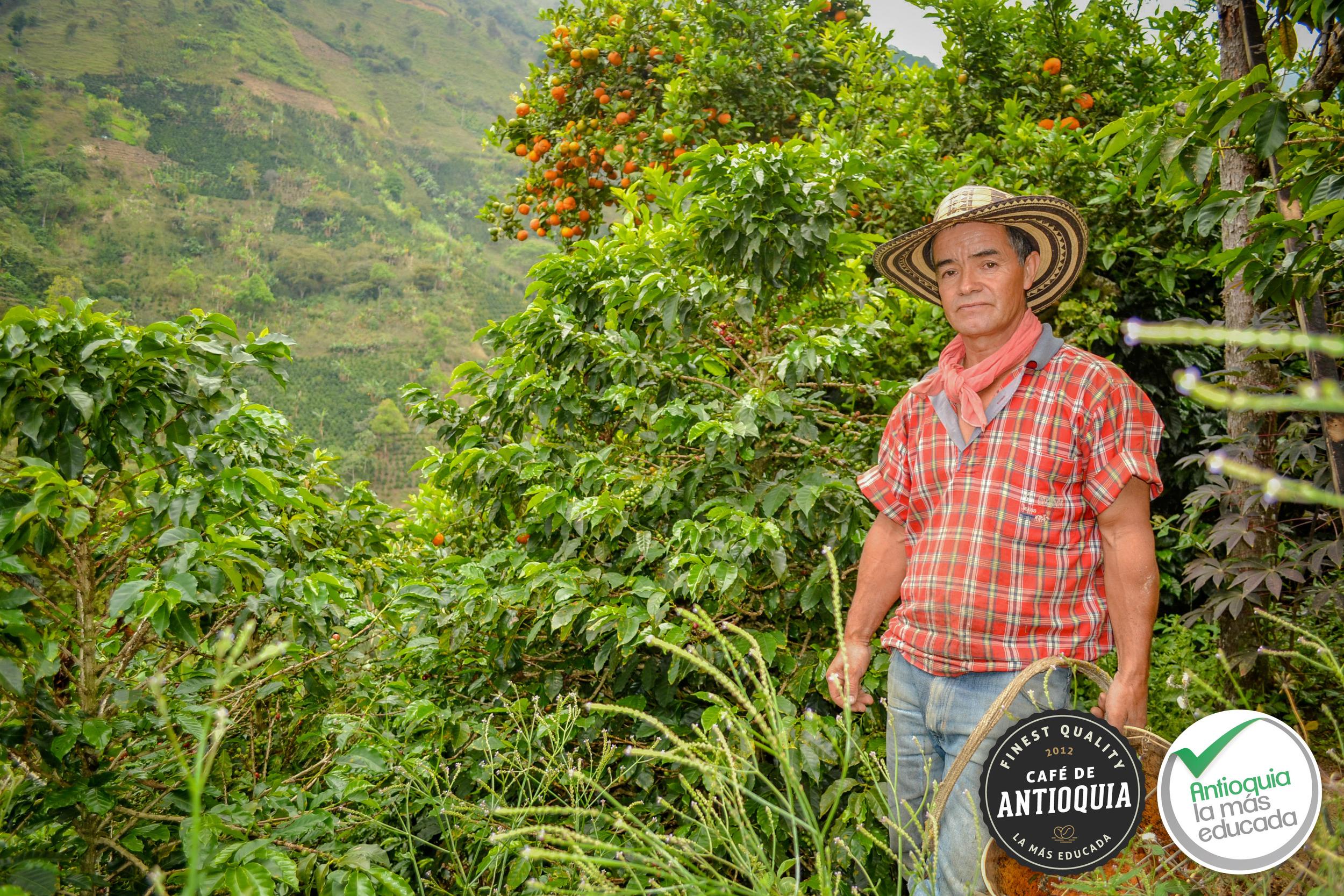 Antioquia Microlot Finca El Rodeo 6.jpg