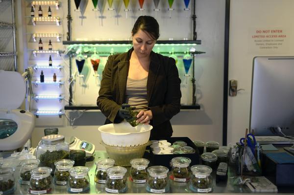 Kashmir Cannabis Test