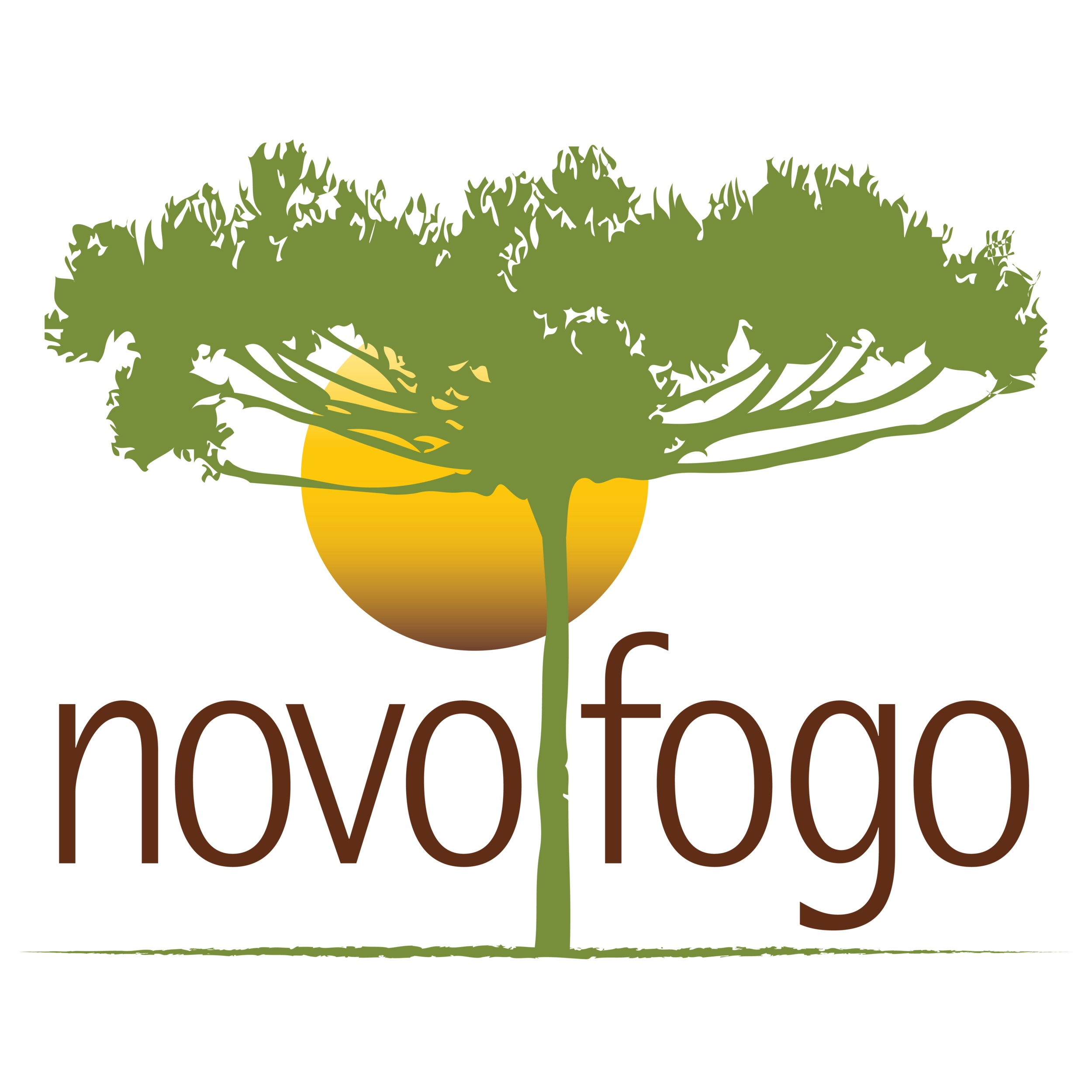 Novo Fogo Logo with green line.png