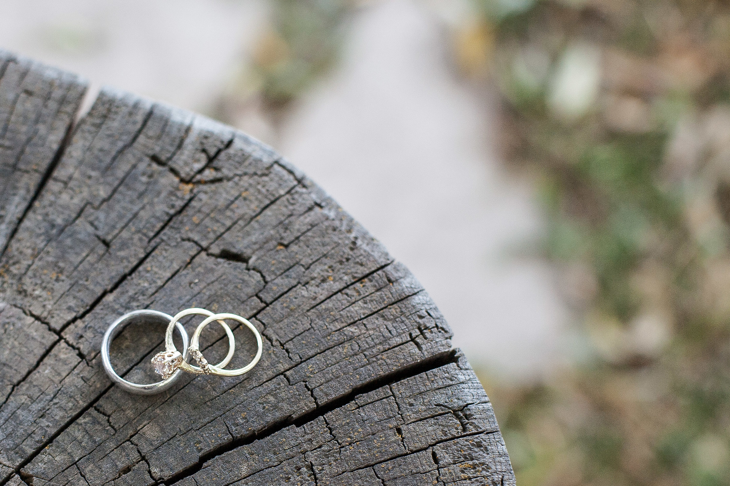 Rings Jackson Hole Wedding.jpg