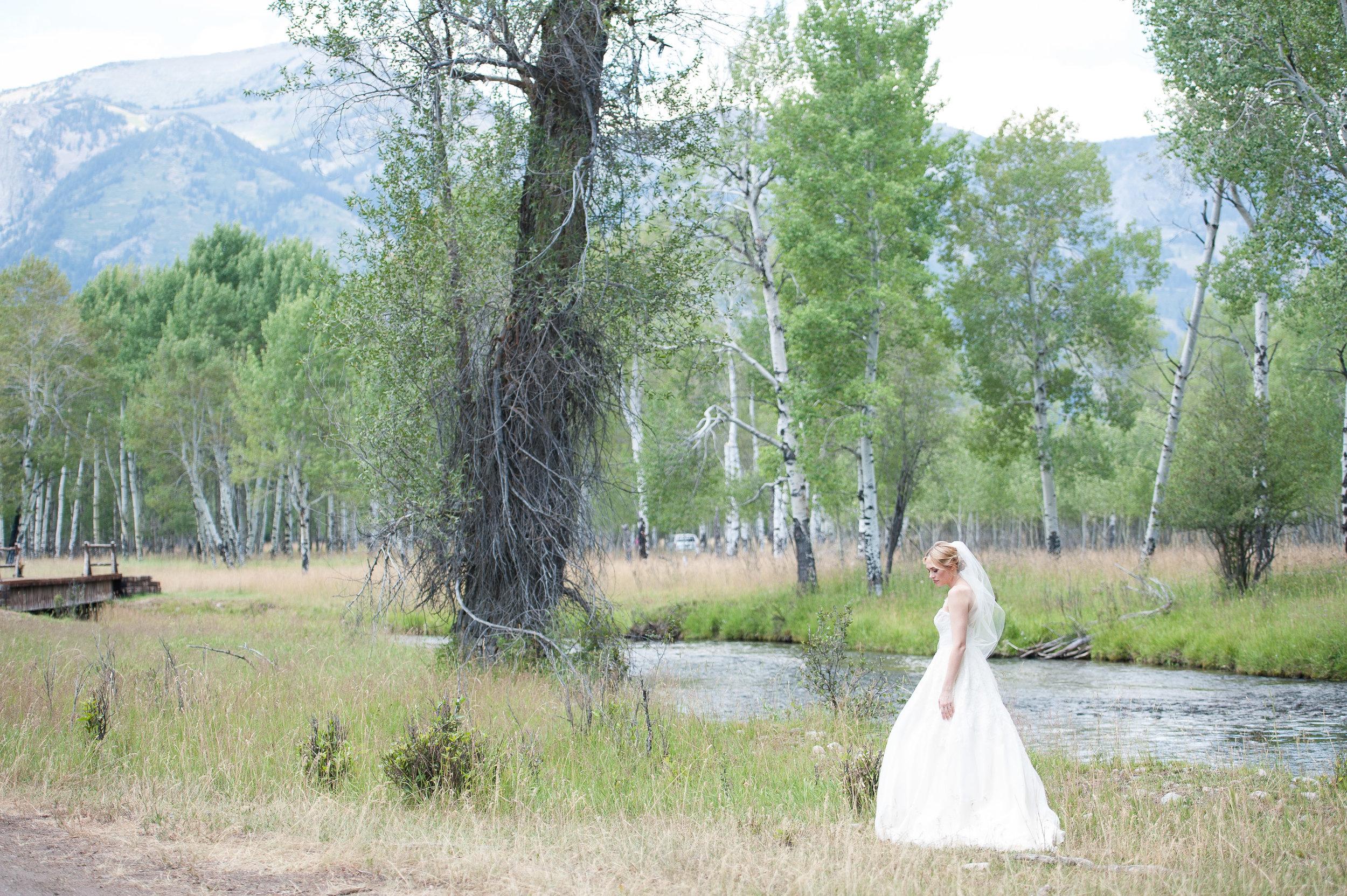Nature Jackson Hole Wedding.jpg
