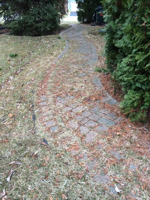 Unilock pavers need weeding?