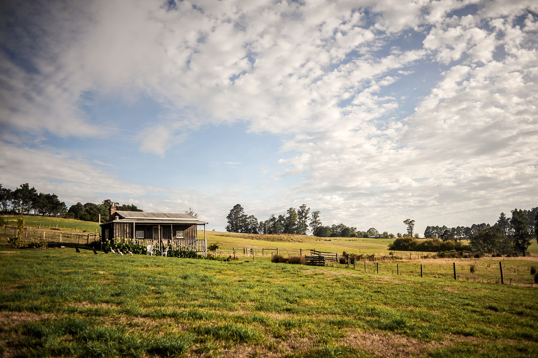 Luxury Farm Accommodation Bed and Breakfast Tasmania Tamar Valley