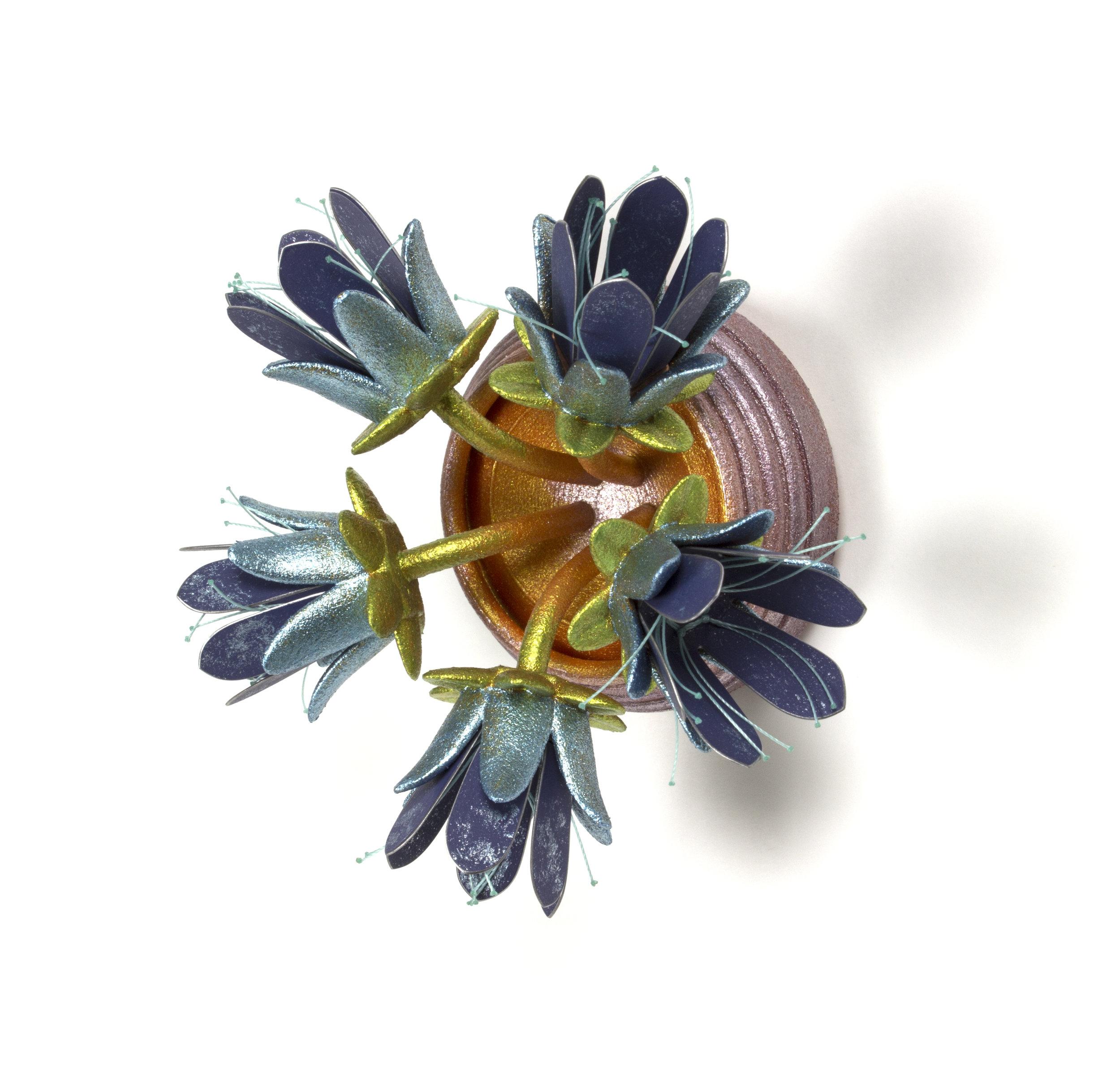 Floración de Emergente