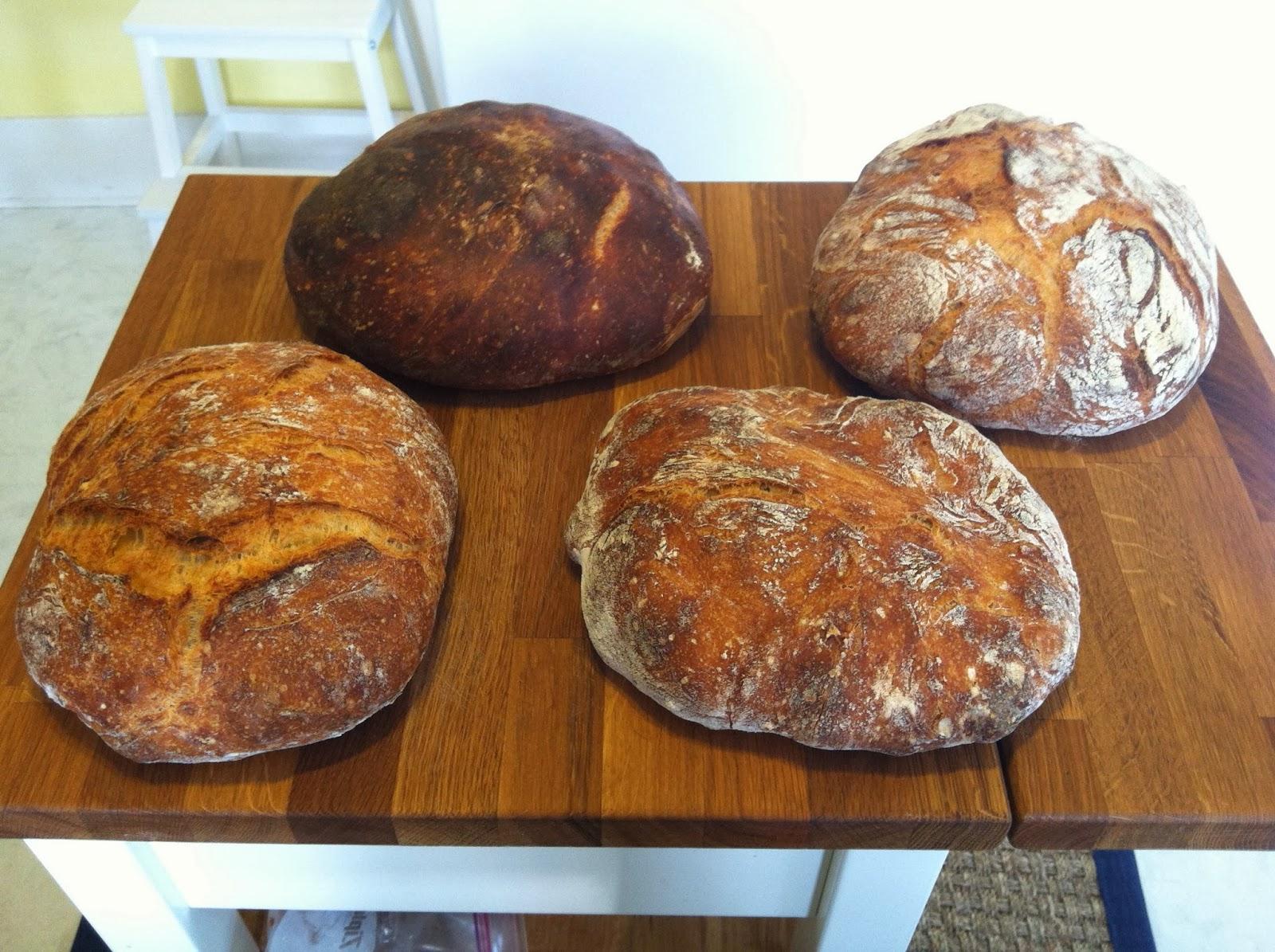 Bread+experiment+3.jpg
