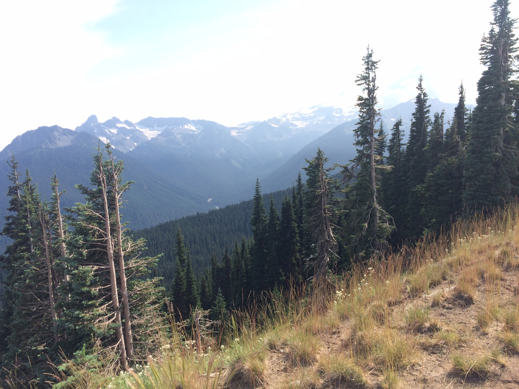 Sourdough Ridge