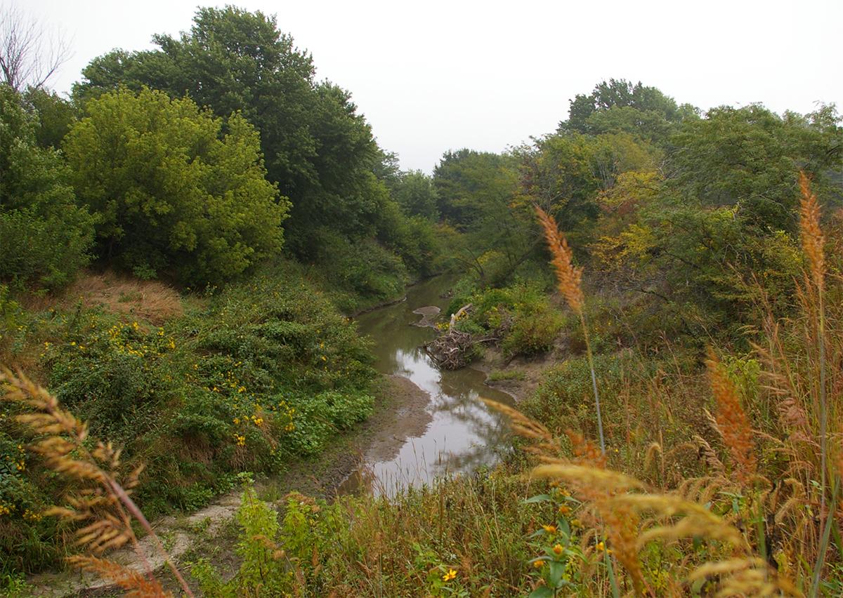 Prairie Band Ecosystem Restoration