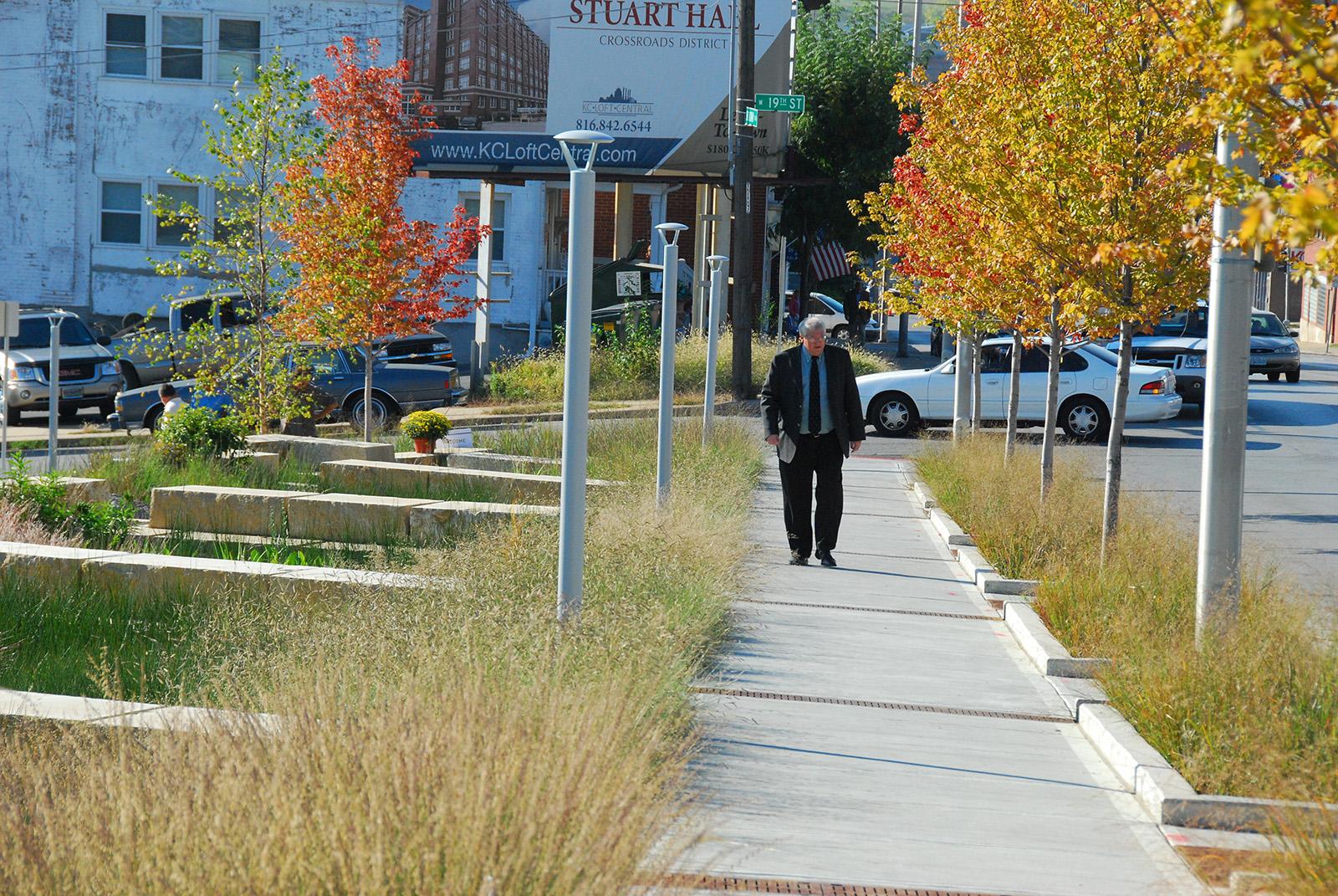 18B Streetscape & Urban Garden