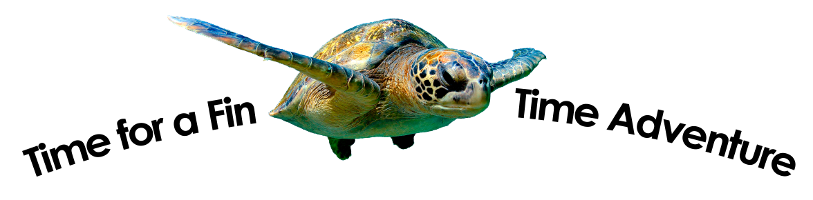 sea-turtle-with-title.png