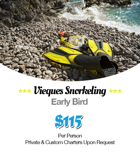 Vieques-Puerto-Rico-Snorkeling-Images-(promo).png