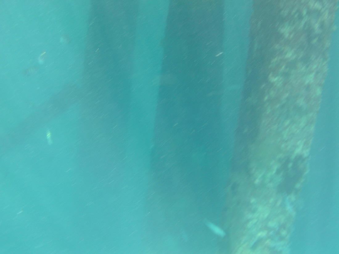 2012-08-21 14.23.40.jpg