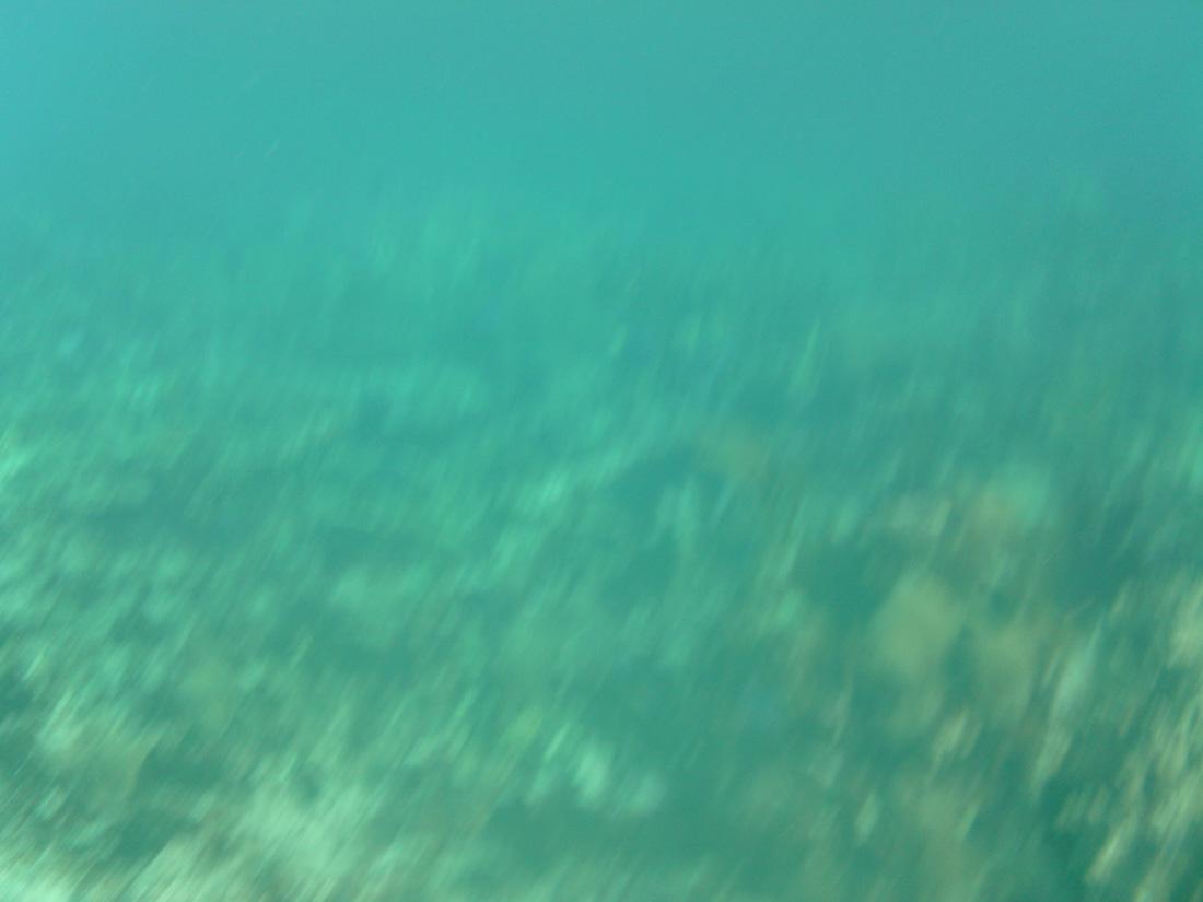 2012-08-21 16.24.12.jpg