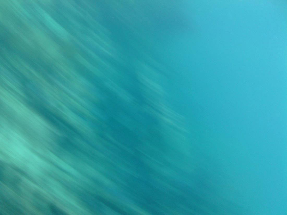 2012-08-21 16.33.09.jpg