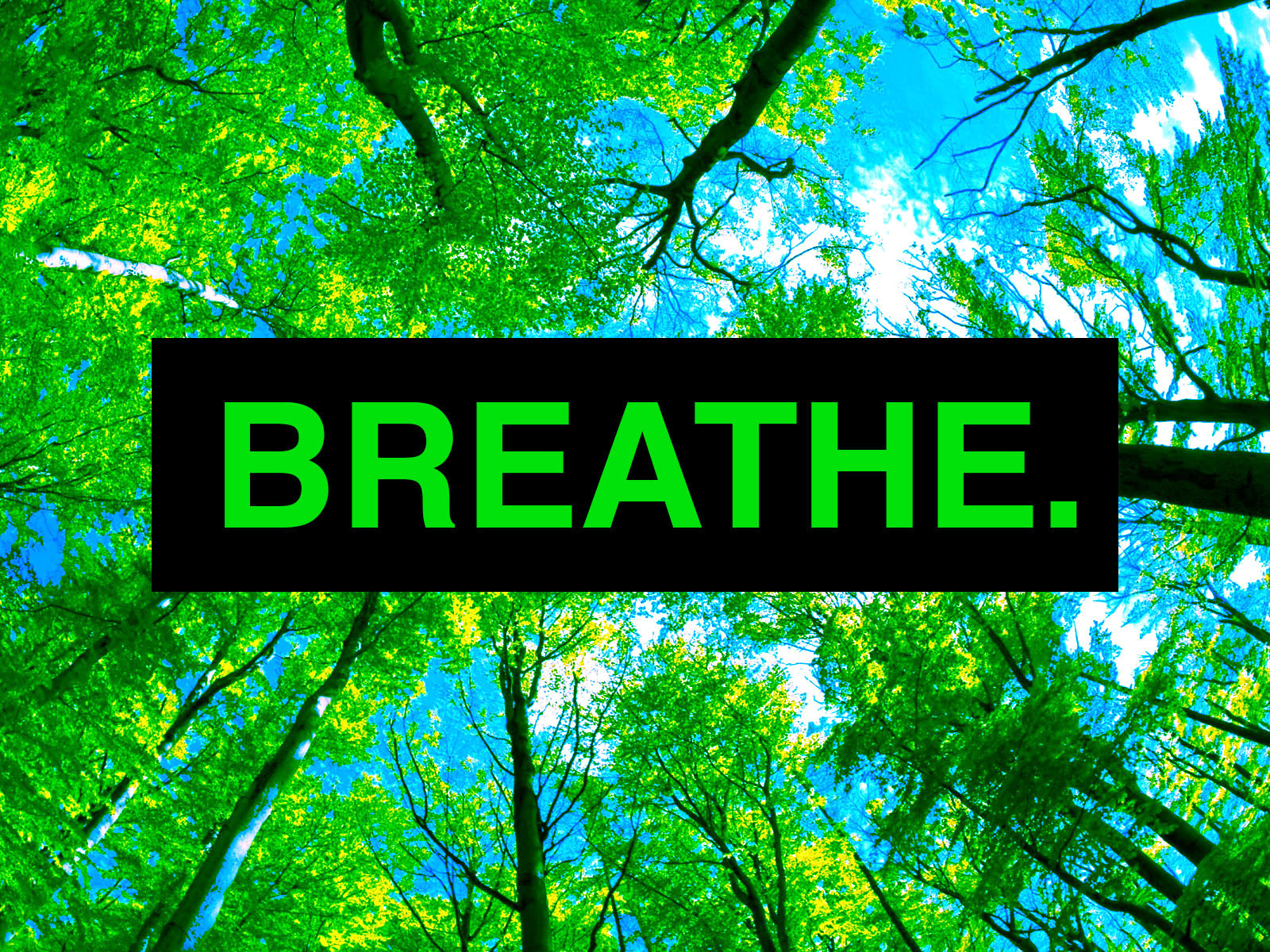 Breathe poster copy.jpg