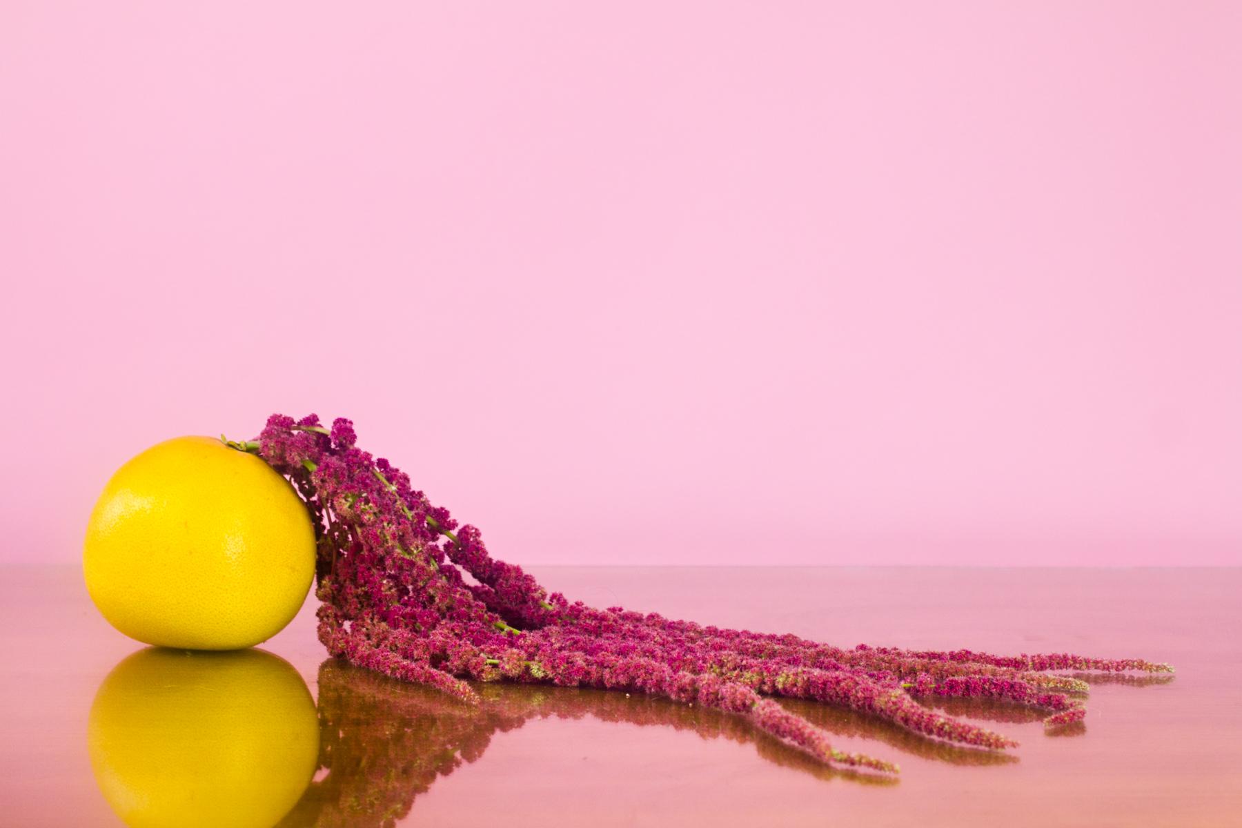 caro-flowers-edit--6.jpg