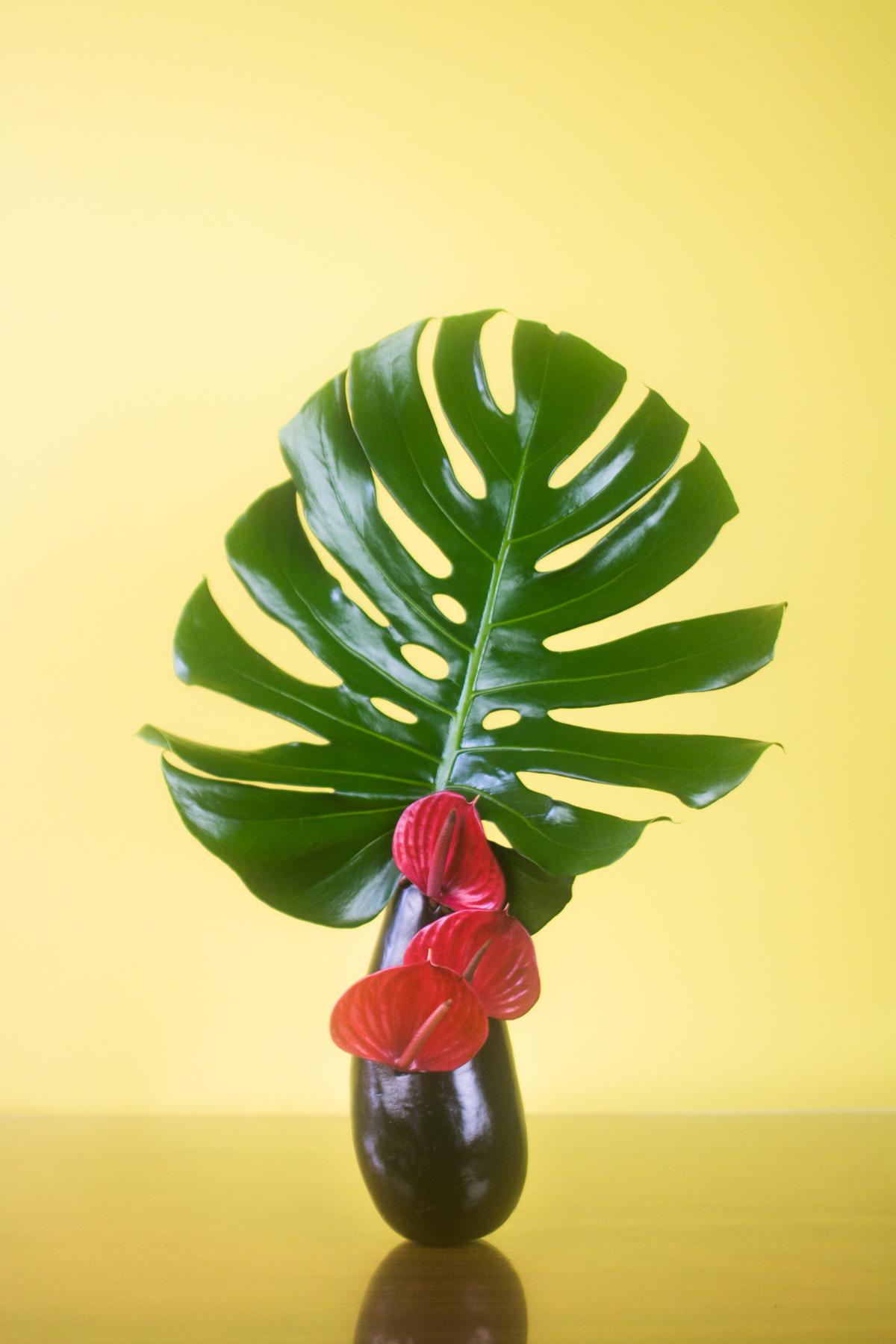caro-flowers-edit-.jpg
