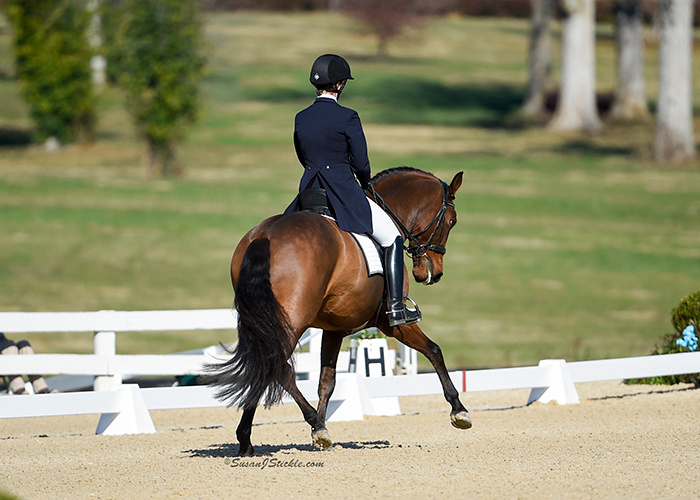 XO and Emily at the 2016 US Dressage Final in Lexington, KY  Photo: Susan Sickle