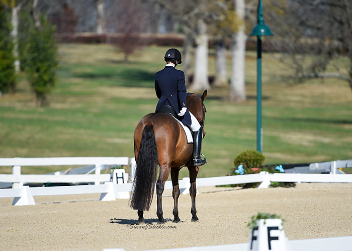 2016 US Dressage Finals, Lexington, KY Photo: Susan Sickle