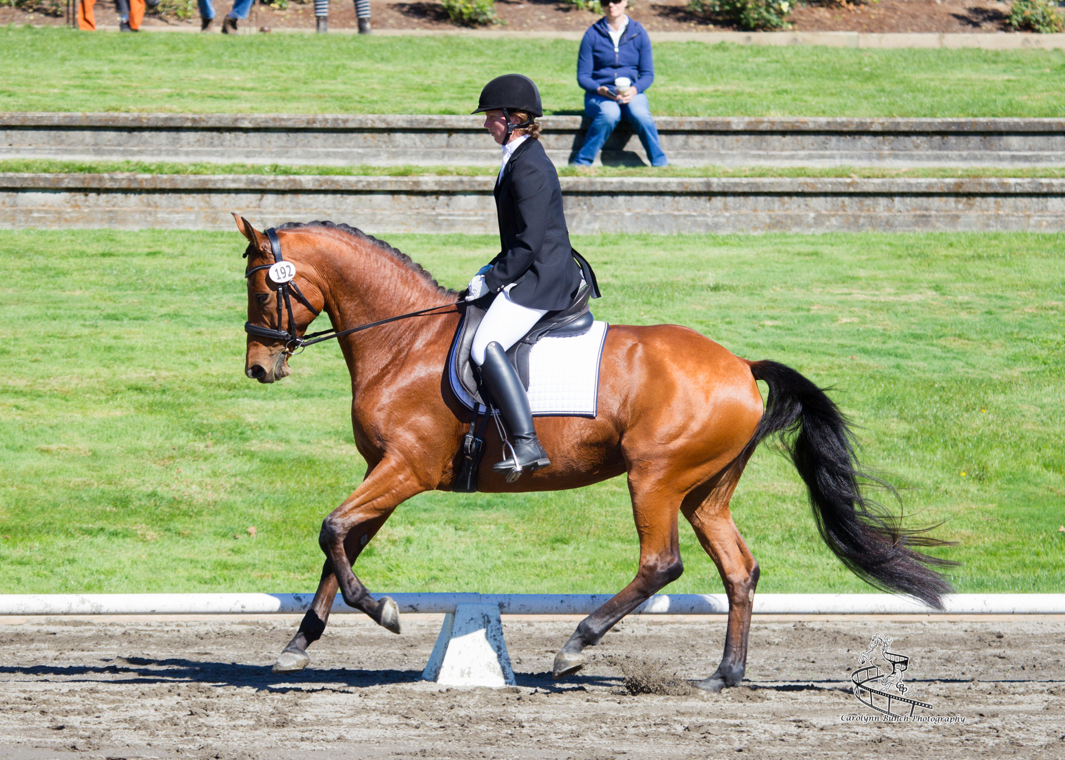 2015 USDF Region 6 Championship, Catalina and Emily, Sherwood, OR  Photo: Carolynn Bunch