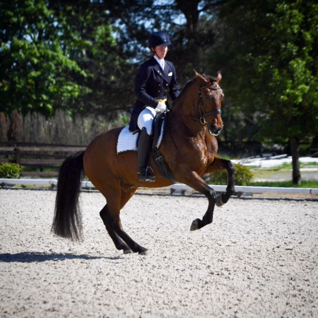 Emily and Excalibur Grand Prix at Donida Farm in May 2018. Excalibur is owned by Delight Willing. Photo: Mike Fisher