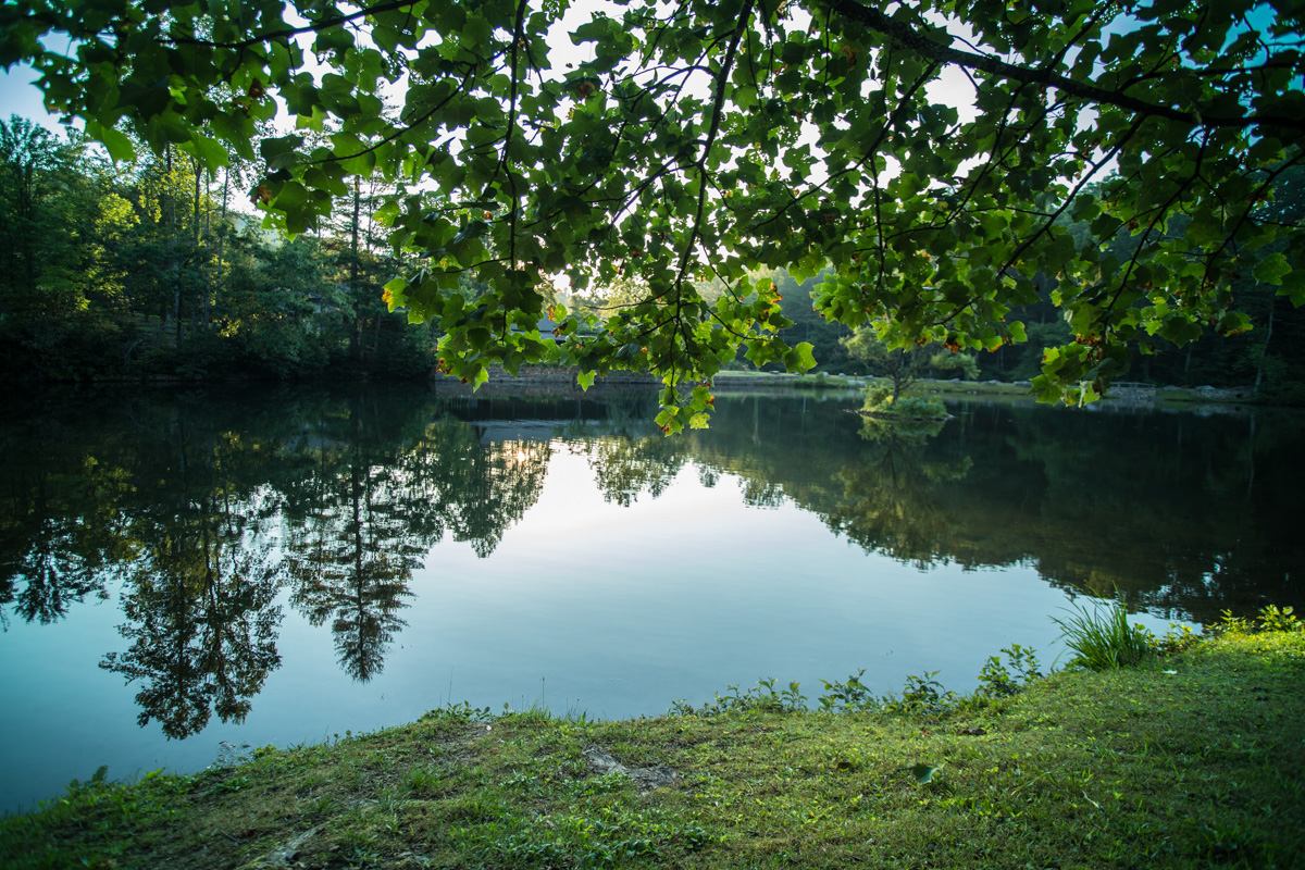 Zack Smith Photography North Carolina Brevard School of Music Center Trees Reflection water pond