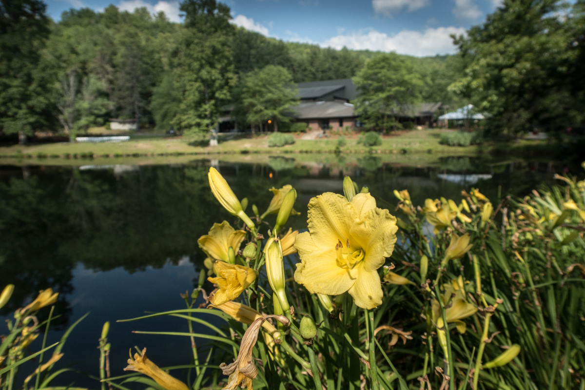 Zack Smith Photography North Carolina Brevard School of Music Center Wild Flowers Grass Pond reflection Houses Trees Hills Beautiful