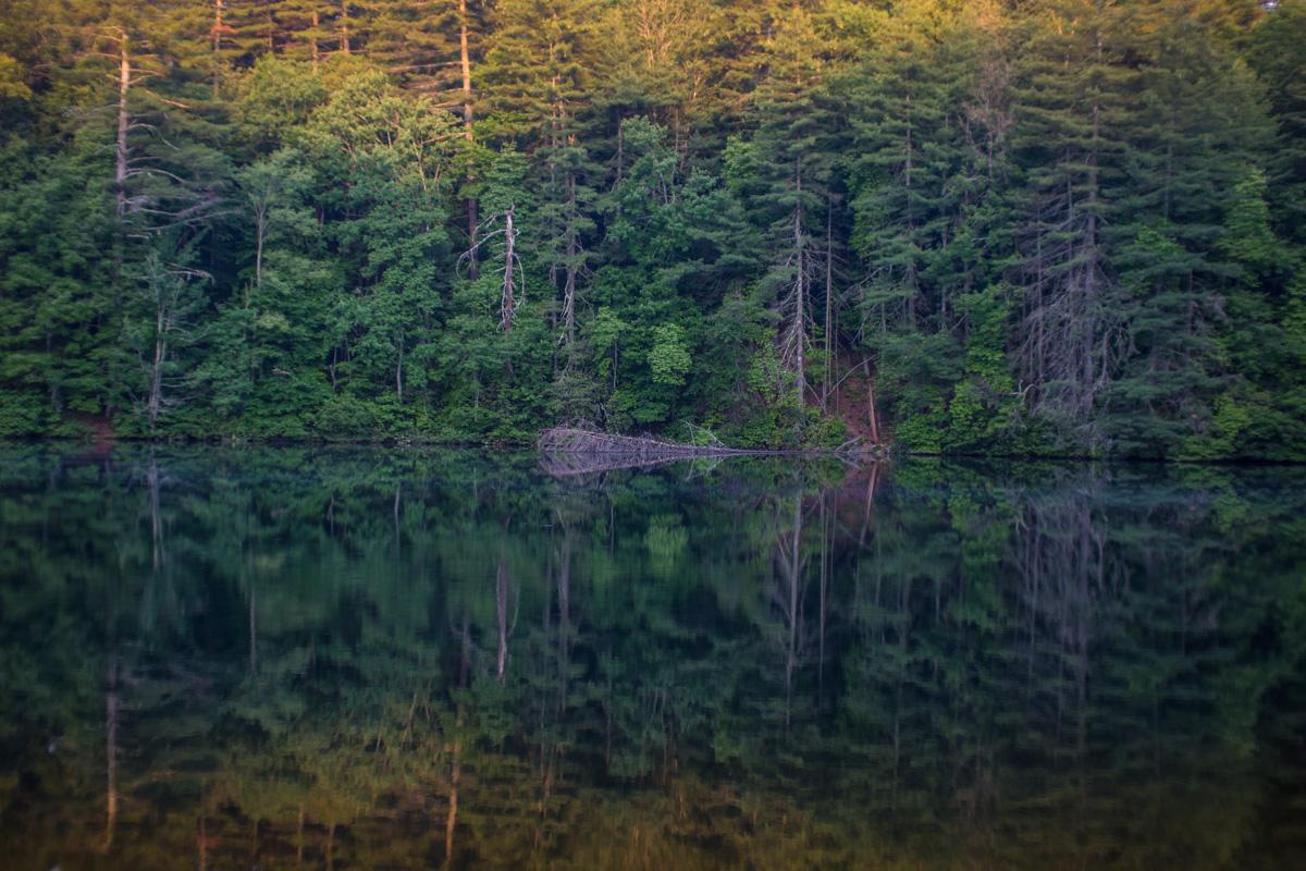 Zack Smith Photography North Carolina Brevard School of Music Center Woods Forrest pond reflection beautiful