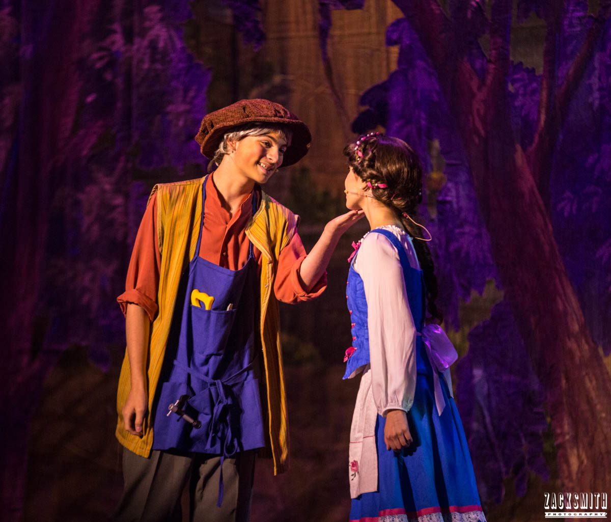 Beauty and the Beast The Performing Arts Academy Talent Performance Photography Zack Smith Photographer Chalmette Belle Maurice Show Stage