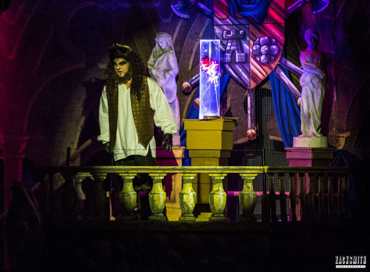 Beauty and the Beast The Performing Arts Academy Talent Performance Photography Zack Smith Photographer Chalmette Musical Theater Beast Spot light Rose