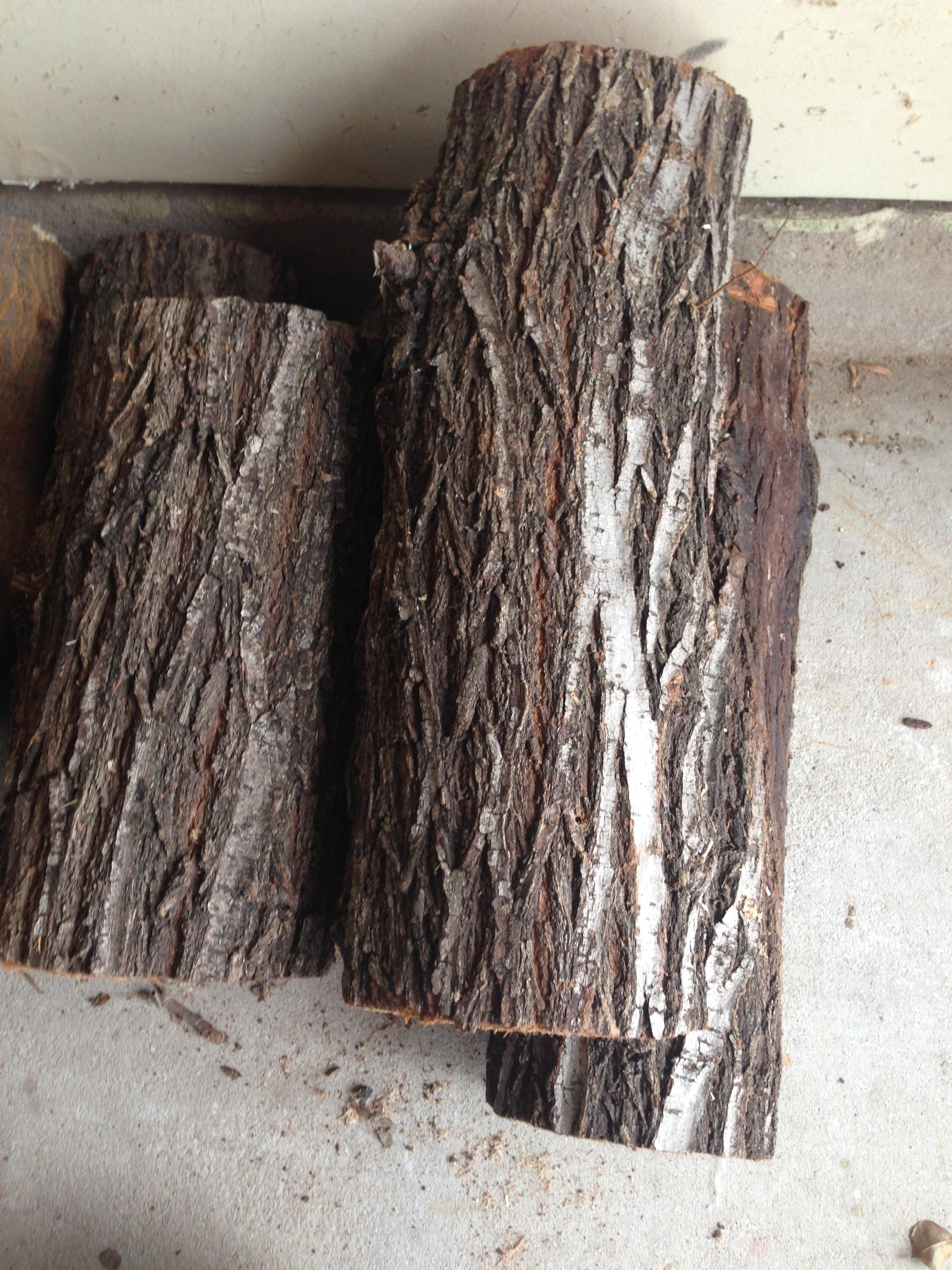 American Elm Logs