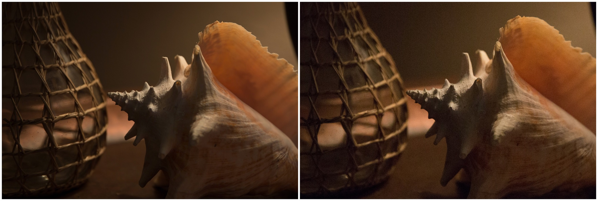 Left:  shot at   ISO 200 /  Right:  shot at ISO 8000 (both shot on Canon 5D Mark III)
