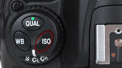 Nikon:  some Nikon bodies will have the ISO button on the top left
