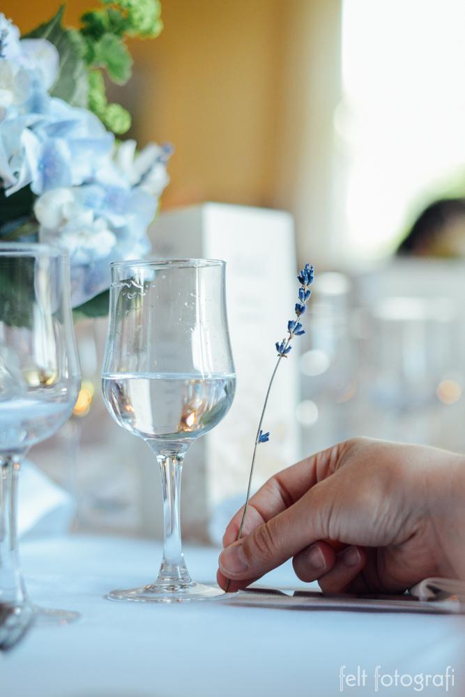 wedding 423.jpg