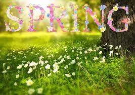 Spring.jpeg
