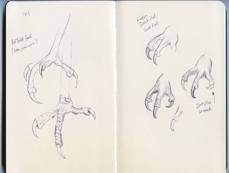 Page from my sketchbook. That left foot caused me all sorts of problems.