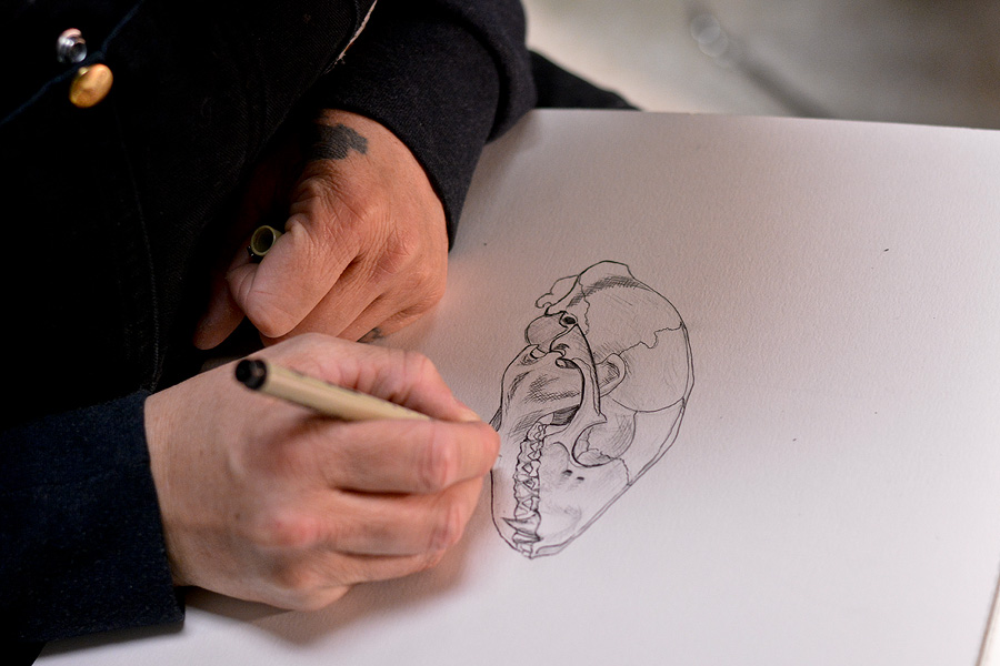Gray inking her drawing of a Racoon skull