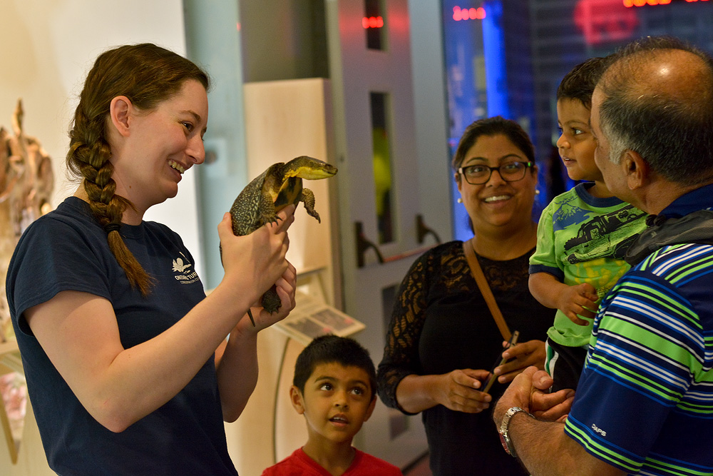 Andrea the turtle making an impact with visitors at the Ontario Science Centre