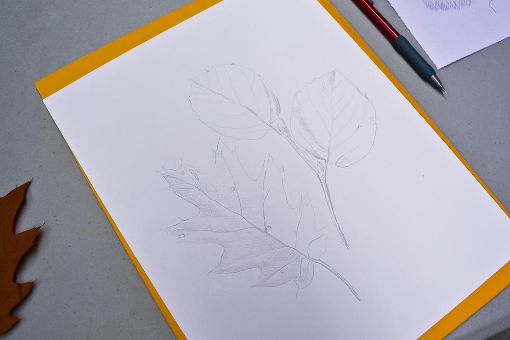 Silver_16.jpg