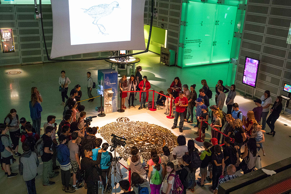 Speaking about Birds & Art during the 2018 FLAP Layout at the Ontario Science Centre.    Photo: Meghan Huryn - www.meghanhuryn.com