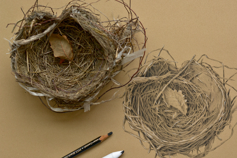 Cup Nest